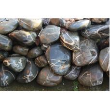 Ландшафтный камень Паутинник (фр. 100-300 мм.)